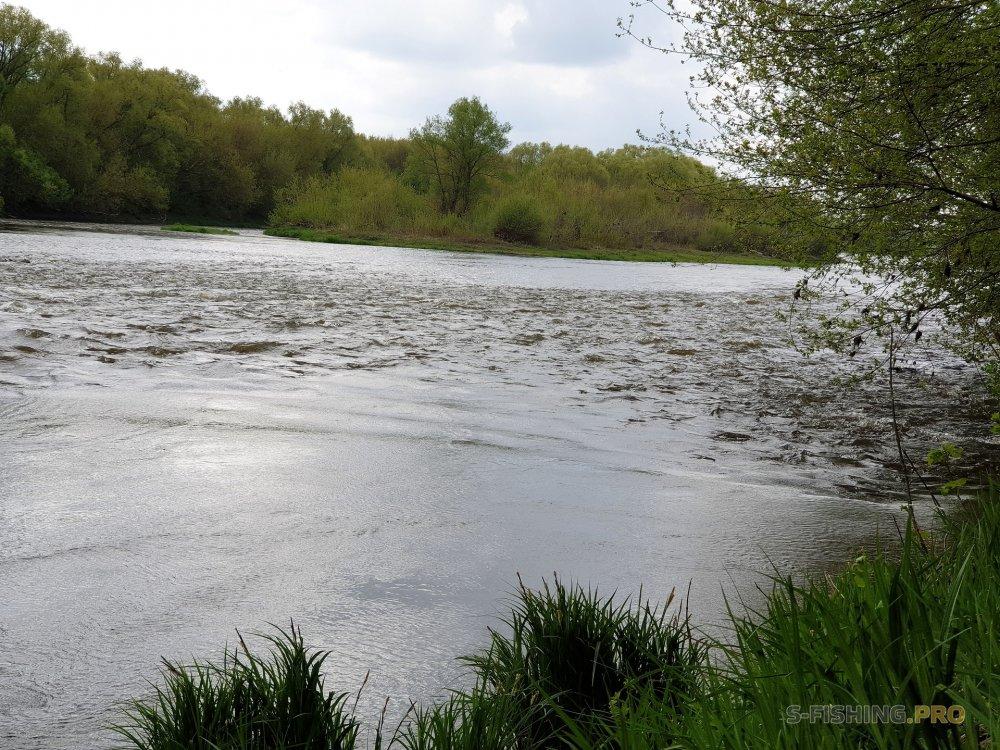 Отчеты с водоемов: За голавлем и жерехом в Липецкую область. Сосна, Дон. (2-4 мая 2019)