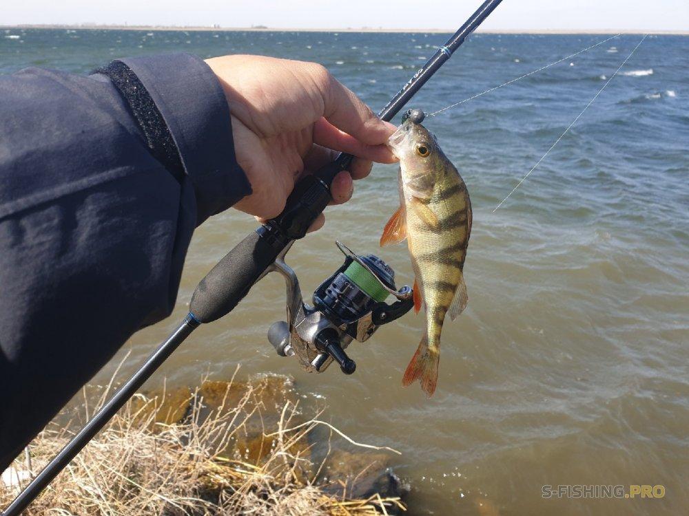 Отчеты с водоемов: Удачная рыбалка в сложных условиях