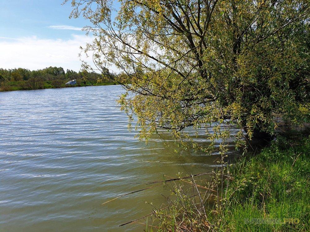 Отчеты с водоемов: Вода прибывает