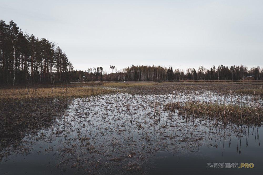 Отчеты с водоемов: Удачное и неудачное открытие сезона на щуку.