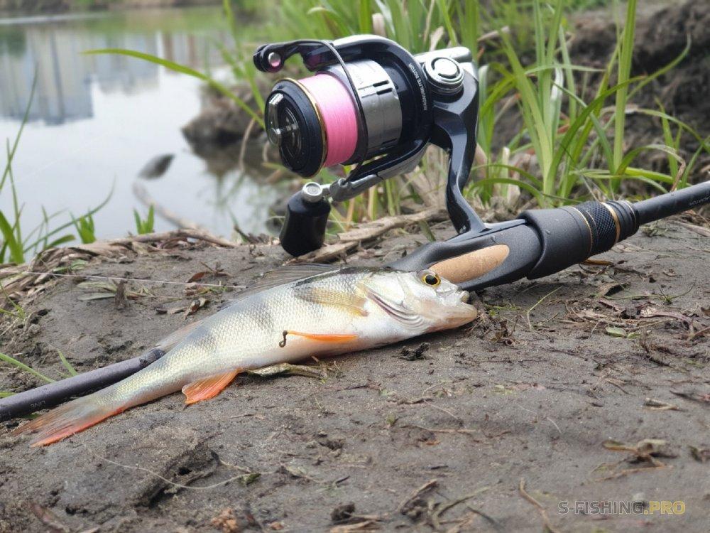 Отчеты с водоемов: Первая рыбалка с Maximus Egoist-Z 662UL