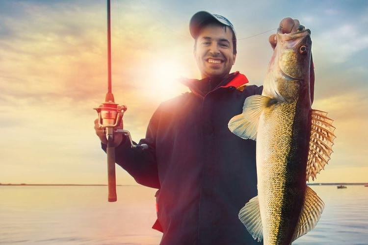 Ловля хищной рыбы спиннингом
