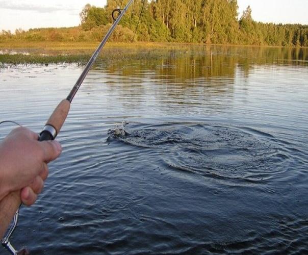 рыбалка вываживание крупной рыбы