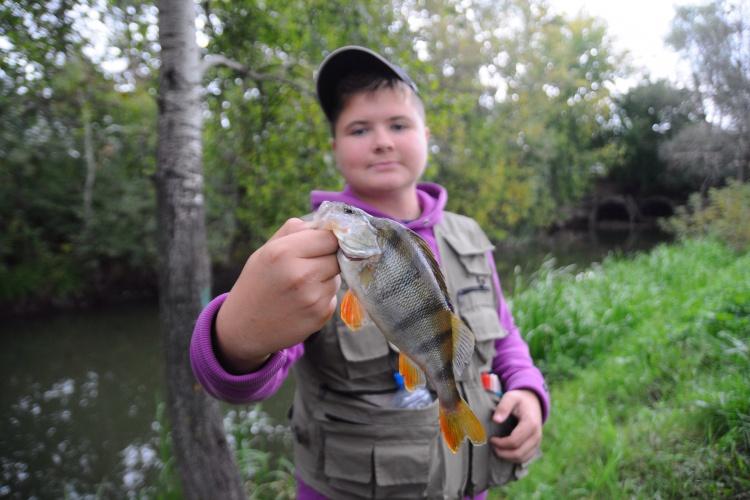Ловля окуня и щуки   на микро-речках Москвы