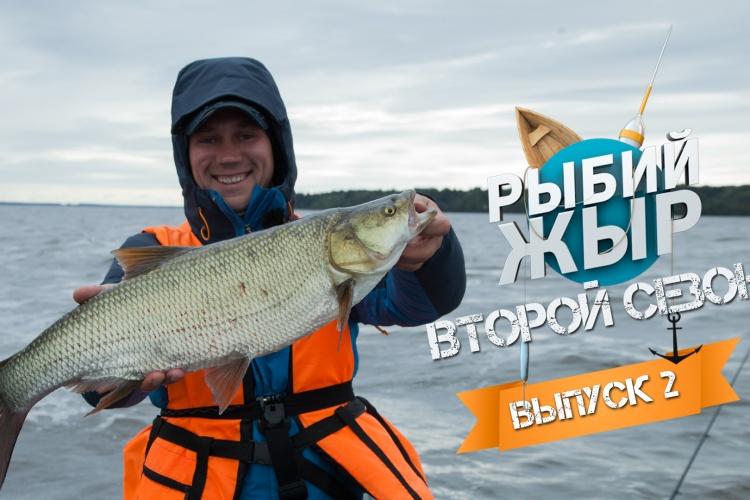 Ловля трофейного жереха на Волге. Рыбалка август 2015. Втрой сезон, 2 серия.