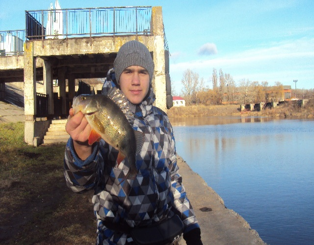 Очередная зимняя рыбалка.