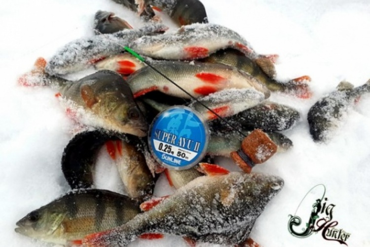 Короткая рыбалка ради теста самоделки