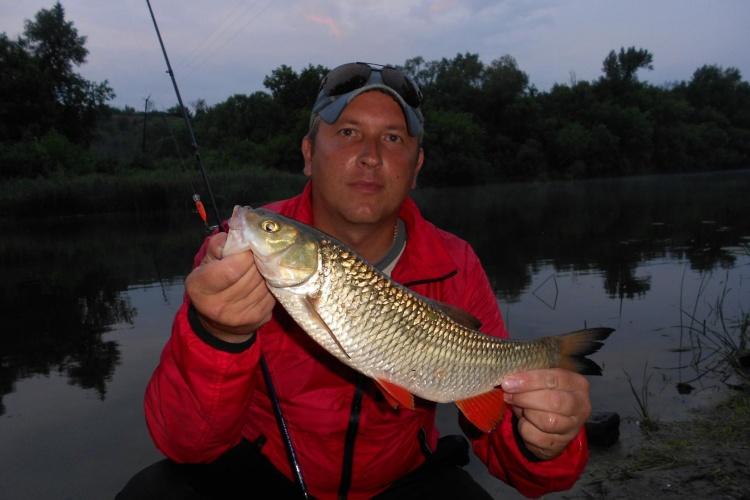 ловить рыбу на хопре