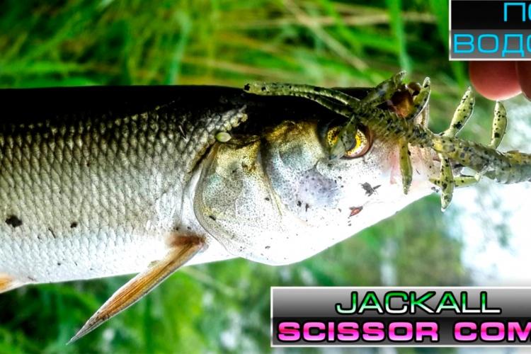Съедобная резина jackall scissor comb под водой