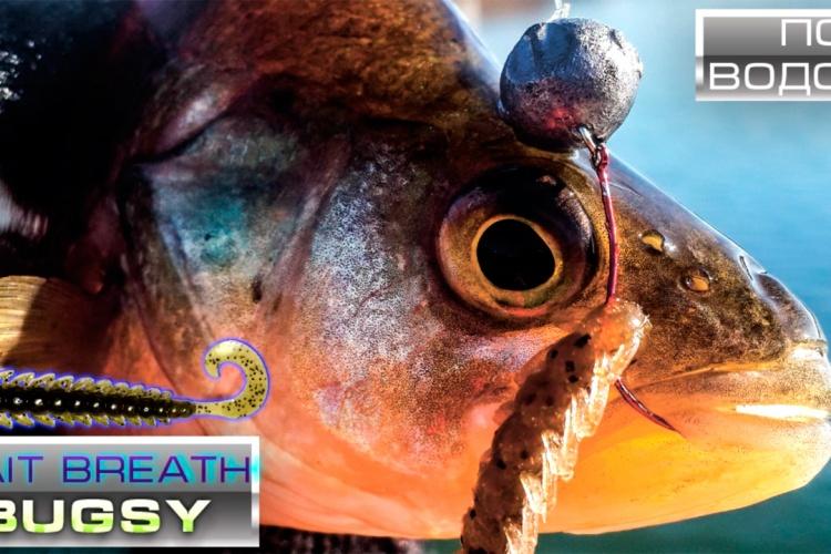 Съедобная резина bait breath bugsy под водой