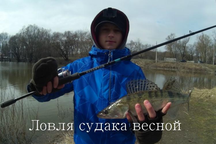 видео поймать судака весной