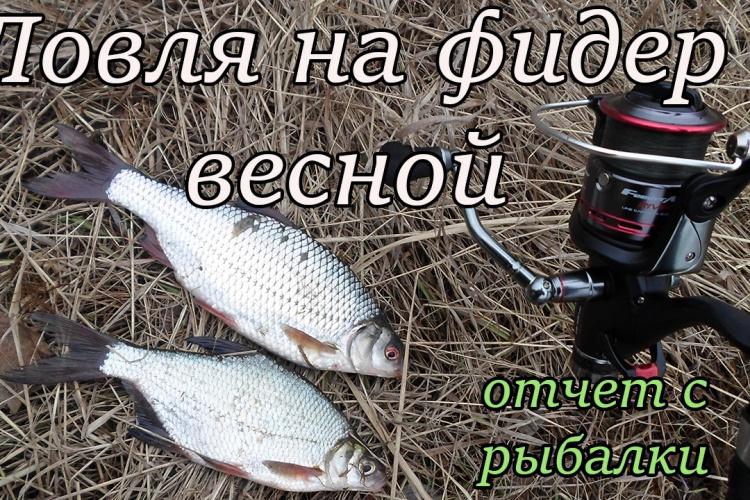 ловля рыбы фидером по весне видео