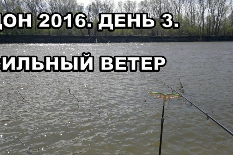 Дон 2016. День третий. Сильный ветер