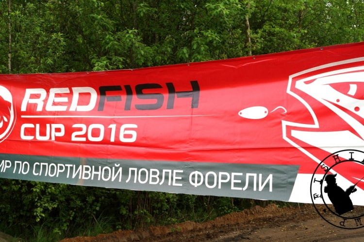 Red Fish Cup 2016. Отборы на Nories Cup Russia 2016