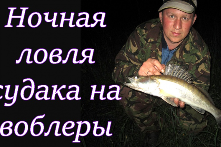 ловля судака воблерами ночью