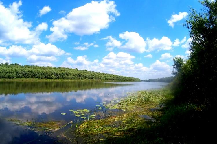 Ловля окуня на реке Десна ВЫПУСК №3