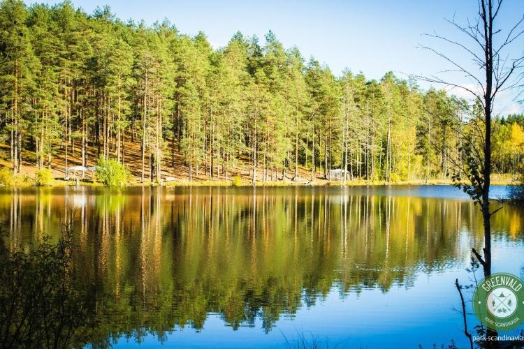 Открытие водоема в GREENVALD Парк Скандинавия!