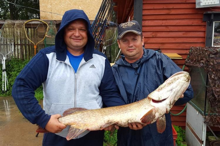 где лучше всего ловить щуку в ленинградской области