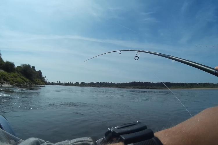 Рыбалка на кренки