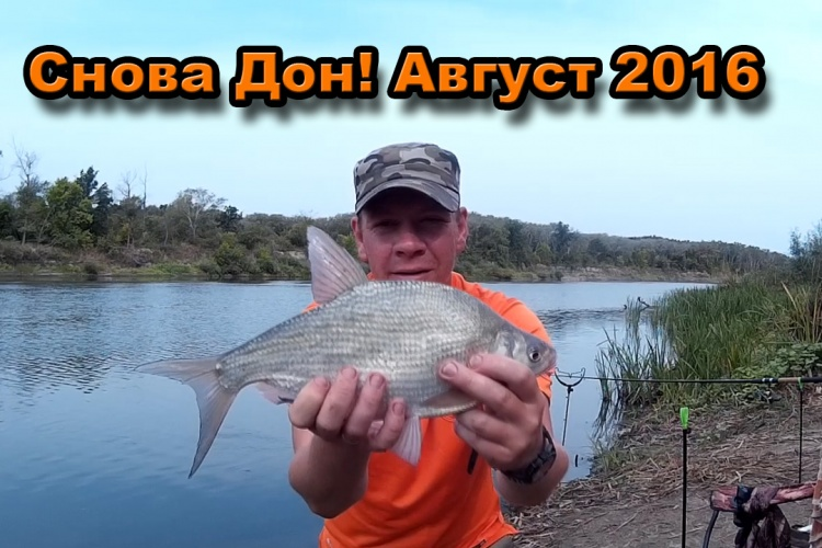 день рыбака на дону