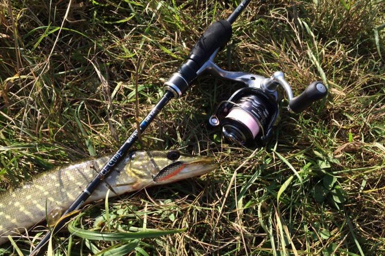 Fishing Travels №10. На лесное озерцо с УЛ колебалками.