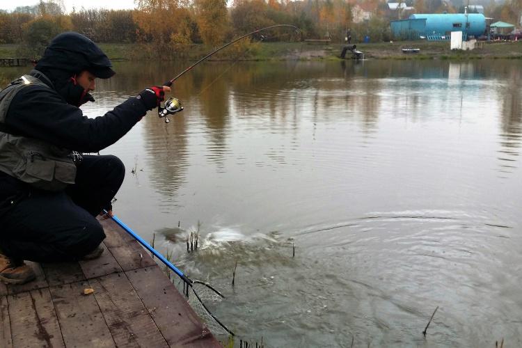 Рыболовный форум фишка