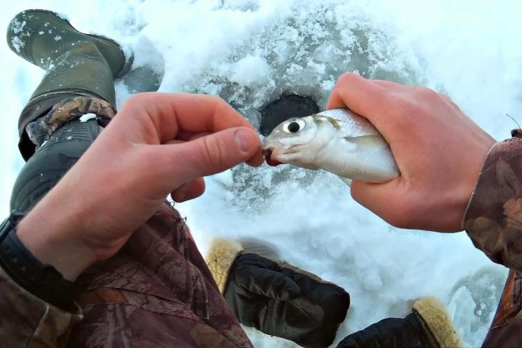 Ловля сопы на реке Вятка