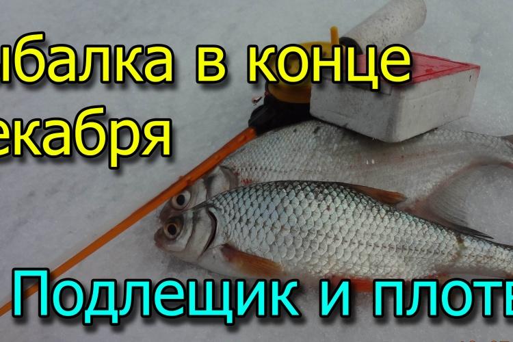 Рыбалка в конце ДЕКАБРЯ/ Подлещик Плотва /