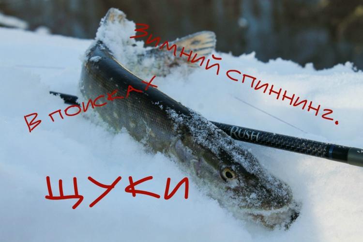 Зимний спиннинг. В поисках щуки
