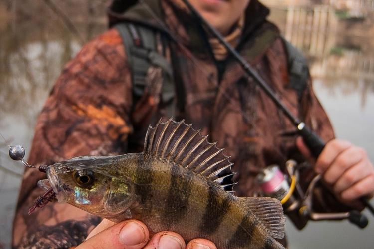 8-ое марта - хороший день, что бы провести его на рыбалке + тест новинок от Select