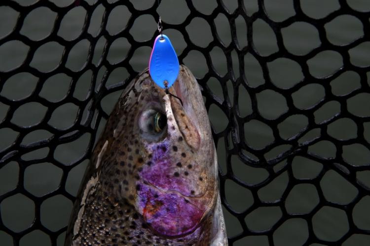 """Тестовы цвет блесны SV Fishing """"Зимний рассвет"""""""