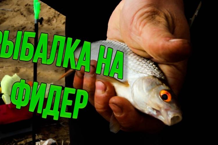 Рыбалка на фидер (донку) на Волге.
