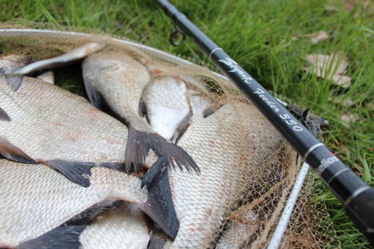 Ловля белой рыбы с HELIOS SEYMUR