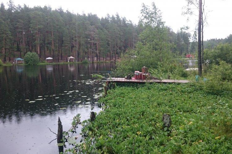 Мысли о карповой рыбалке в Greenvald.