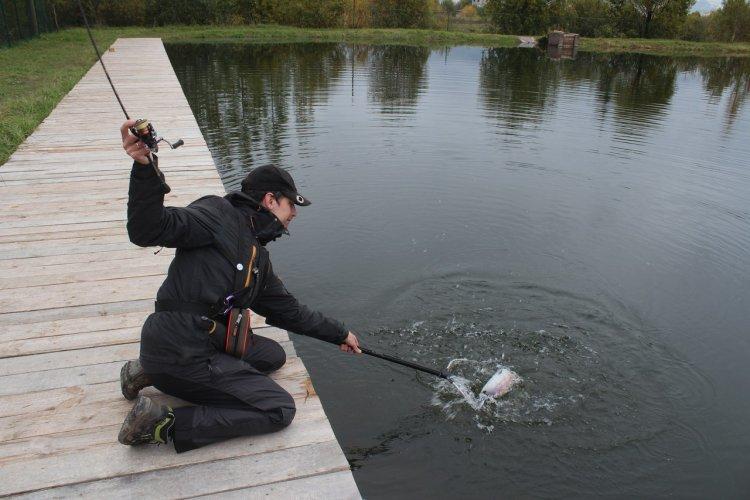 День рыбалки пруды