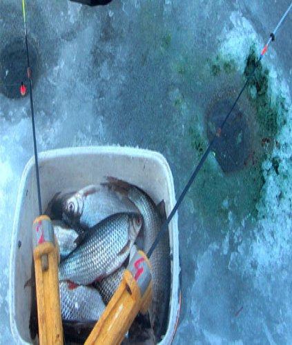 Ведро в палатке рыбака. Готовь сани летом.