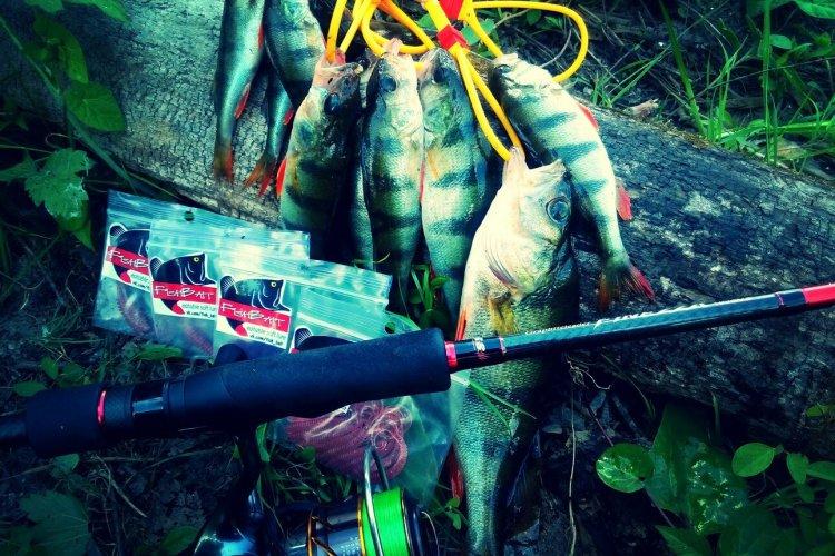 Рыбалка на Заброшенном Порту! Ловля Окуня на Отводной Поводок и Микроджиг.