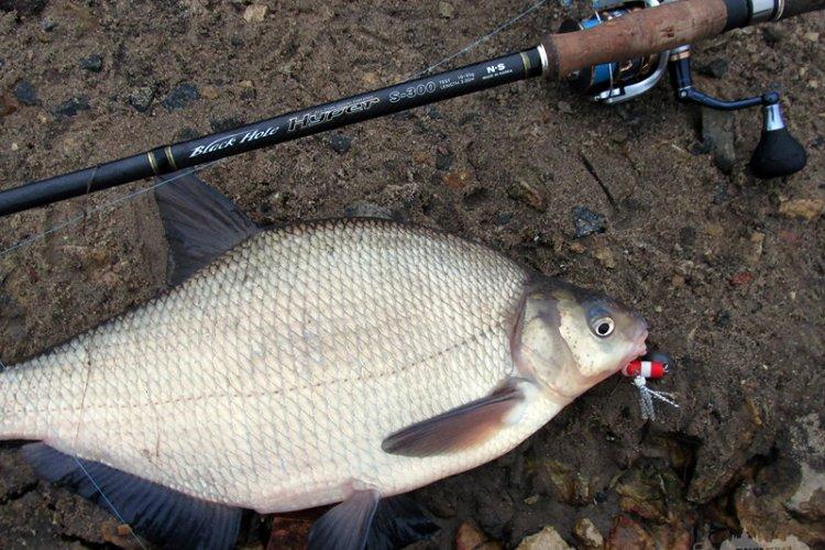 Неправильная рыбалка 28.12