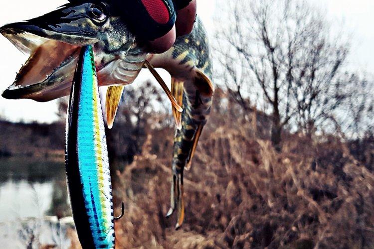 Рыбалка на Спиннинг на реке Ока!