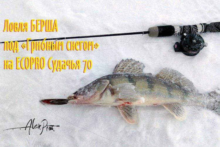 харьковские водоемы для ловли