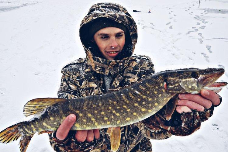 Зимняя рыбалка на прудовую щуку!