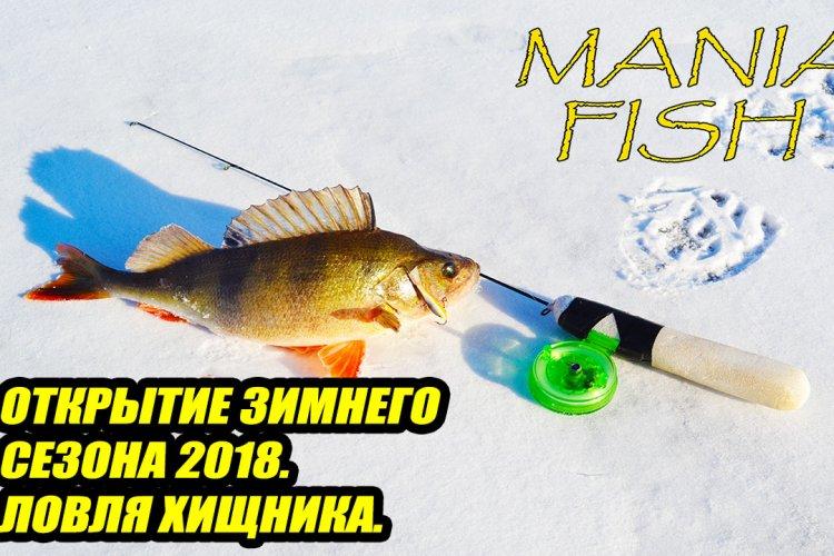 Открытие зимнего сезона 2018. Ловля хищника.