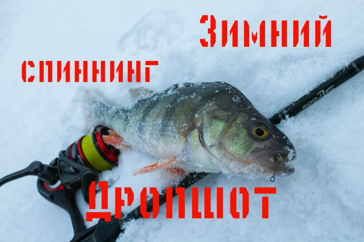 Дропшот из под кромки льда. Зимний спиннинг