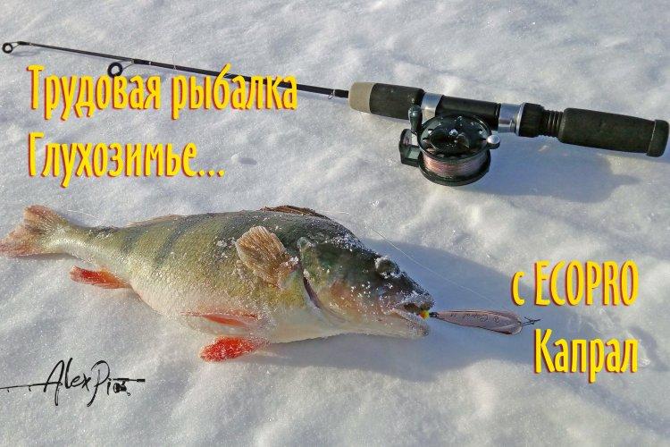 Трудовая рыбалка. ECOPRO Capral.