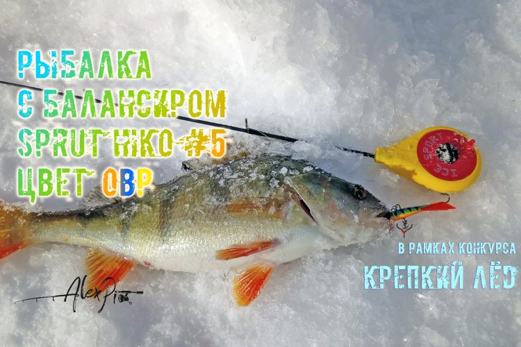 Рыбалка с балансиром SPRUT HIKO #5