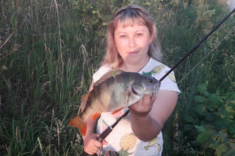 Жара. Рыба капризничает. А вот вечерний клёв удивил.