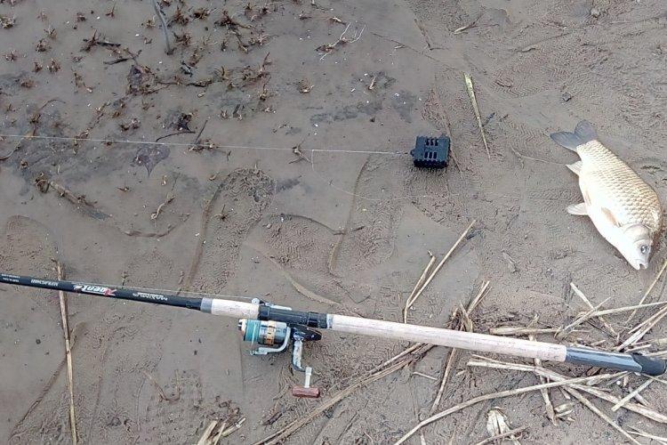 Первая фидерная рыбалка на Волге 2018