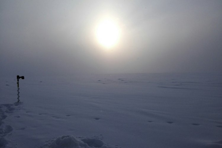 Отчет о рыбалке: 17 января 2017 - 17 января 2017, Волга (Пучеж)