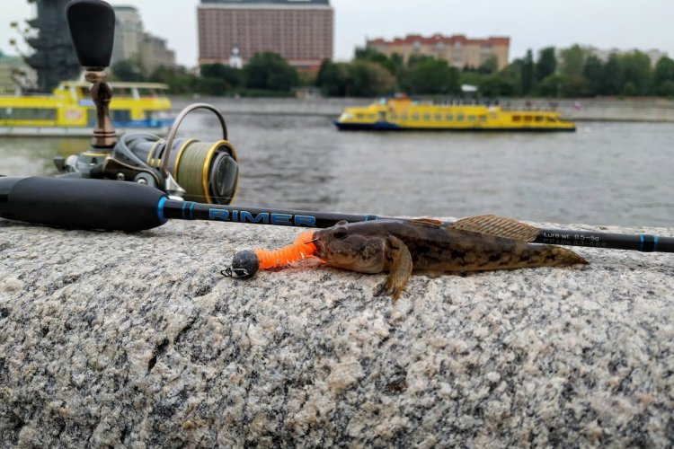 Street Fishing на Москва-реке. Black Hole Rimer.