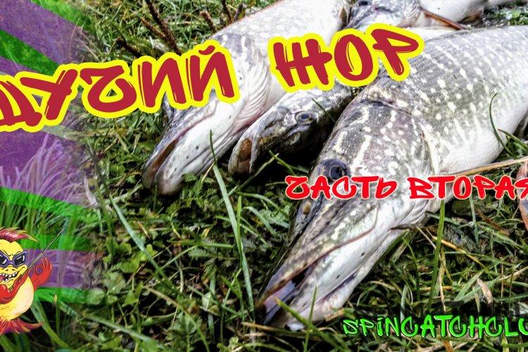 Жор щуки на небольшой реке в октябре (часть вторая) / Catching pike